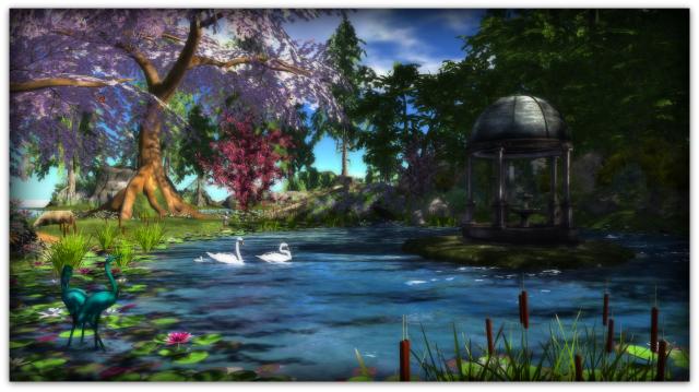 The pond1b