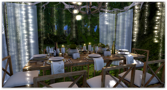 Forest Dining7b