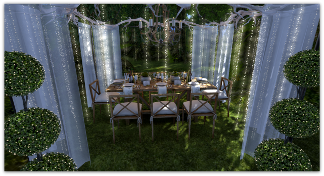Forest Dining9b