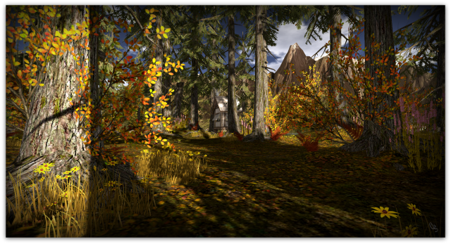 lost-horizon-ancient-pines1b