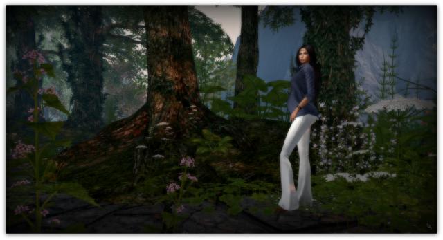 woods3b