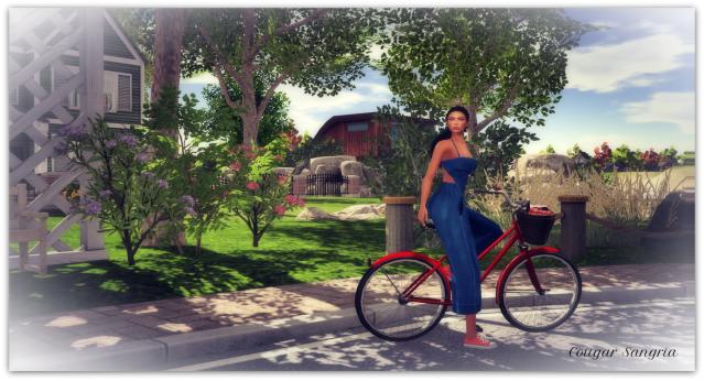 Bike Tour1b.b